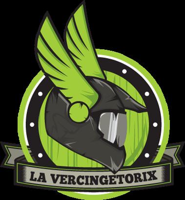 logo-VGX